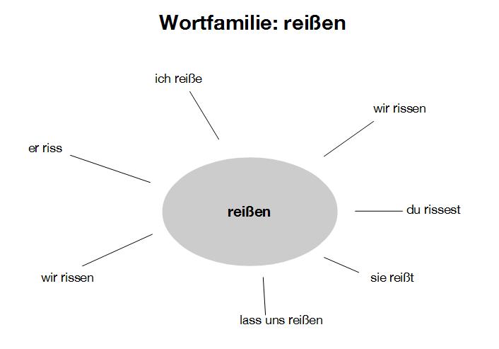 Ein Mind-Map zur Wortfamilie reißen mit den verschiedenen Formen des Worts.